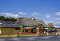 The Sweep Thatched Pub, Kilmeaden, County Waterford, Ireland von Panoramic Images