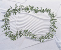 Garland on green vine looped on white textured plaster background by Panoramic Images