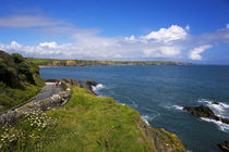 Road to Boatstrand Harbour, The Copper Coast, County Waterford, Ireland von Panoramic Images