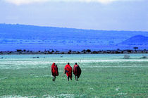 Maasai on Serengeti Africa von Panoramic Images