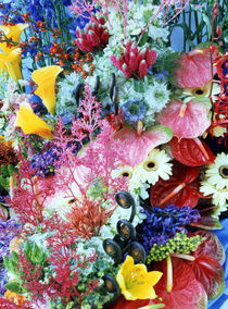 Collage of multi colored flowers von Panoramic Images