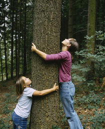 Side profile of a girl and a teenage girl hugging a tree, Germany von Panoramic Images
