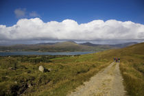 Hikers on Boreen, Bear Island, County Cork, IrelandModel Released by Panoramic Images
