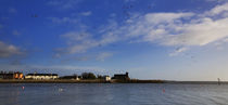 View to Abbeyside, With Flying Brent Geese, Dungarvan, County Waterford, Ireland von Panoramic Images