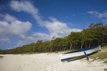 Boat on the beach, Anse Ally Beach, Anse Ally, Rodrigues Island, Mauritius von Panoramic Images