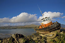 Ballynakilla Harbour, Bear Island, Beara Peninsula, County Cork, Ireland by Panoramic Images