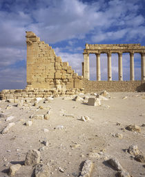 Ruins of a colonnade, Palmyra, Syria by Panoramic Images