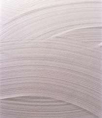 Taupe plaster background with pattern by Panoramic Images