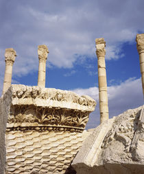 Ruins of a colonnade, Palmyra, Syria von Panoramic Images