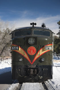 Train in a national park by Panoramic Images