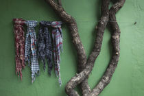 Fabric samples and tree outside a store, Colonia Del Sacramento, Uruguay von Panoramic Images