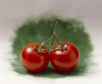 Two red tomatoes side by side on selective focus green von Panoramic Images
