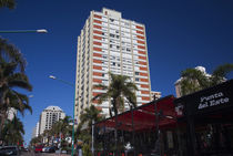 Buildings in a city, Avenida Juan Gorlero, Punta Del Este, Maldonado, Uruguay von Panoramic Images