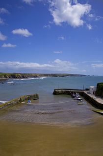 Boatstrand Harbour, The Copper Coast, County Waterford, Ireland von Panoramic Images