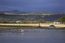 Anglers Collecting Bait, The Mudflats at Barnawee, County Waterford, Ireland von Panoramic Images