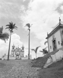 Low angle view of palm trees in front of a church by Panoramic Images