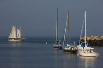 Appledore III sailing ship in the sea by Panoramic Images
