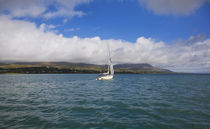 Yacht sailing down Bear Haven, Beara Peninsula, County Cork, Ireland by Panoramic Images