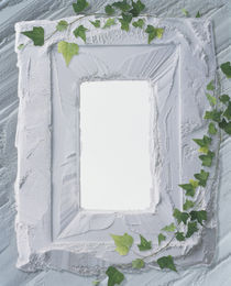 White plaster frame with ivy by Panoramic Images
