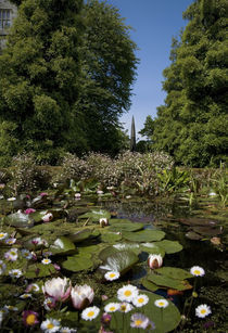 Lily Pond and Contemporary Sculpture, Lismore Castle, County Waterford, Ireland von Panoramic Images