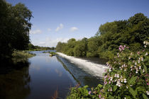 The Weir on the River Liffey, Islandbridge, County Dublin, Ireland von Panoramic Images