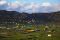 Allihies Village, Beara Peninsula, County Cork, Ireland by Panoramic Images