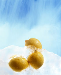Three lemons frozen in ice below ice blue sky by Panoramic Images
