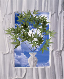 White plaster frame with white plaster vase by Panoramic Images