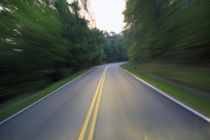 Road winding through forest at dusk by Panoramic Images