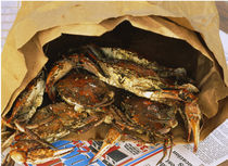 Close-up of steamed crabs in a paper bag, Maryland, USA von Panoramic Images