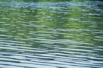 Rippled pattern on water surface by Panoramic Images