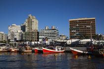 Boats at a harbor, Punta Del Este, Maldonado, Uruguay von Panoramic Images