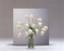 Bouquet of white tulips  by Panoramic Images