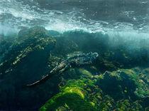 Marine iguana (Amblyrhynchus cristatus) swimming underwater by Panoramic Images