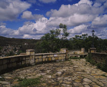 Trees near a stone walkway, Diamantina, Minas Gerais, Brazil by Panoramic Images