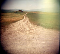Dirt road passing through agricultural fields, Italy von Panoramic Images