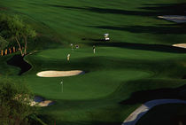 Golfer Putting on the Green by Panoramic Images