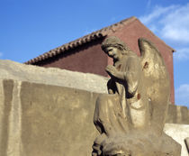 Angel's statue in front of a building, Egypt by Panoramic Images