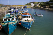 Helvick Harbour, Ring Gaeltacht Region, County Waterford, Ireland by Panoramic Images