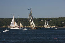 Schooner leaving harbor for a race von Panoramic Images