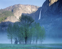 USA, California, Yosemite National Park, Waterfall falling from the mountain by Panoramic Images