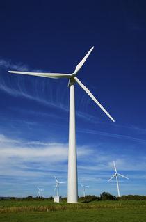 Windfarm, Bridgetown, County Wexford, Ireland von Panoramic Images