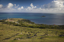 High angle view of a village at the coast von Panoramic Images