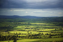 Pastoral Fields, Near Clonea, County Waterford, Ireland by Panoramic Images