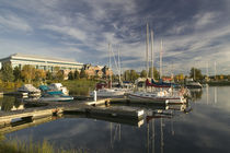 Sailboats moored at a dock by Panoramic Images