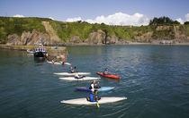 Canoes in Fishing Harbour, Boatstrand, Copper Coast, County Waterford, Ireland von Panoramic Images