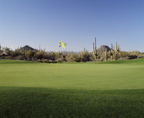 Golf flag in a golf course von Panoramic Images
