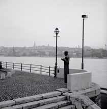 Statue at the riverside, Danube River, Budapest, Hungary by Panoramic Images