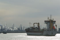 Industrial ship at a port, Port Of Houston, La Porte, Houston, Texas, USA von Panoramic Images
