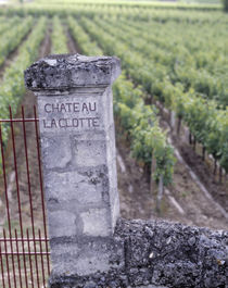 Entrance of a vineyard, Chateau La Clotte, Bordeaux, France by Panoramic Images